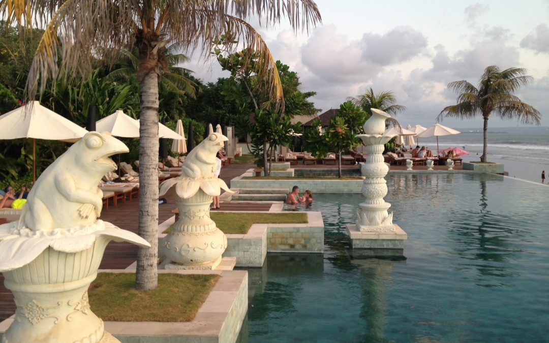 My Seventh Week Interning in Bali