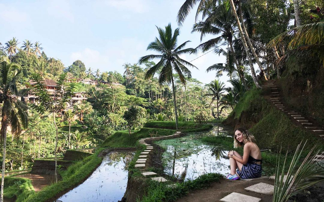 How Interning for a Startup in Bali Changed My Career Goals