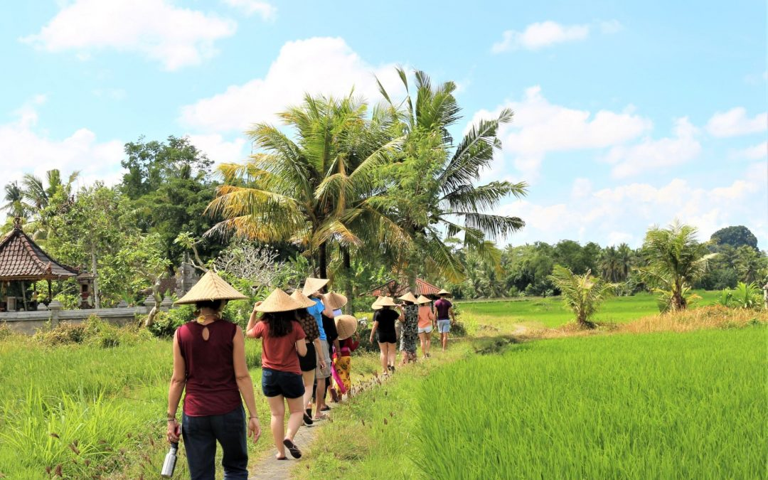 From Psychology Studies to Social Enterprise in Bali